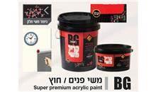 צבע קיר - BG Paint