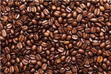 חיפוי זכוכית פולי קפה