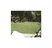דשא סינטטי מולטי