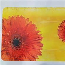 פלייסמנט פרחים על רקע צהוב