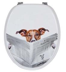 מושב אסלה הכלב והעיתון