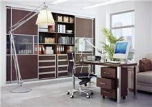 ארון קיר לחדר עבודה - Balas Design