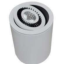תאורה דגם עין זיקית צלינדר - תמי ורפי תאורה מעוצבת