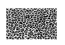 שטיח TIGER