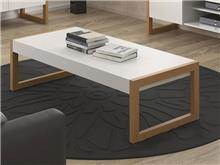 שולחן סלוני לבן בשילוב טבעי
