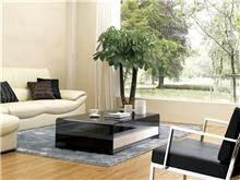 שולחן לחדר המגורים