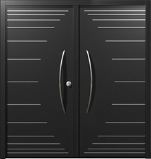 דלתות כניסה ניצה דו כנפית
