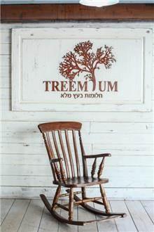 כסא נדנדה עץ - Treemium - חלומות בעץ מלא
