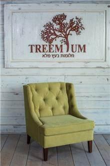 כורסא ייחודית מפנקת - Treemium - חלומות בעץ מלא