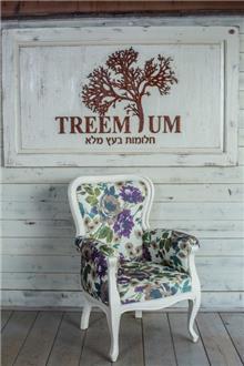 כורסא עץ מלא - Treemium - חלומות בעץ מלא