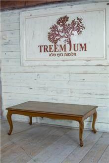 שולחן סלוני קלאסי - Treemium - חלומות בעץ מלא