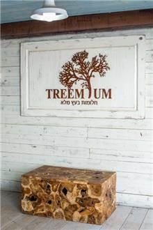 שולחן עץ גושני - Treemium - חלומות בעץ מלא
