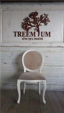 כסא פינת אוכל - Treemium - חלומות בעץ מלא