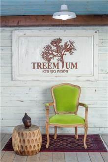 כורסא ירוקה מרשימה - Treemium - חלומות בעץ מלא
