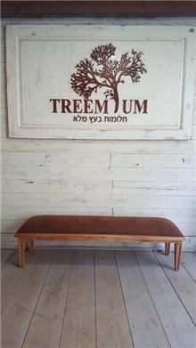 הדום מעץ מלא - Treemium - חלומות בעץ מלא