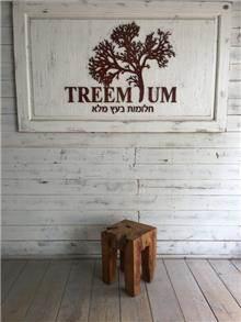 שרפרף גזע עץ - Treemium - חלומות בעץ מלא