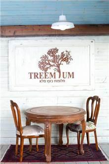 שולחן עץ עגול - Treemium - חלומות בעץ מלא
