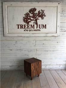 הדום מעץ - Treemium - חלומות בעץ מלא