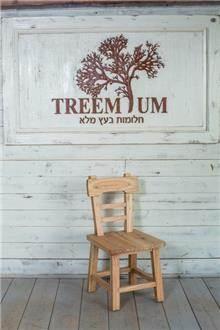 כיסא עץ מלא אלון - Treemium - חלומות בעץ מלא