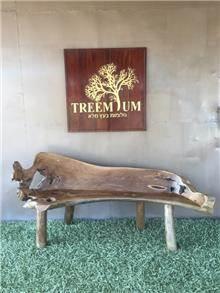 ספסל טיק יפיפה 180 - Treemium - חלומות בעץ מלא