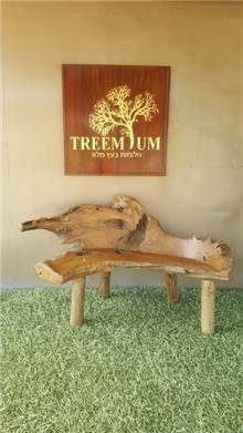 ספסל טיק ייחודי 150 - Treemium - חלומות בעץ מלא