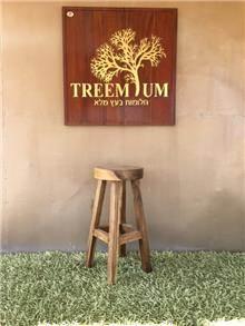 כסא בר מעוגל 5133 - Treemium - חלומות בעץ מלא
