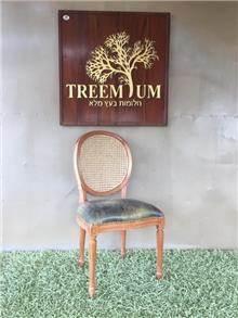 כיסא עץ מלא גב רשת וינאית  - Treemium - חלומות בעץ מלא