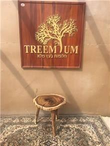 מעמד זית - Treemium - חלומות בעץ מלא