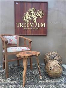 כיסא עץ מלא  - Treemium - חלומות בעץ מלא