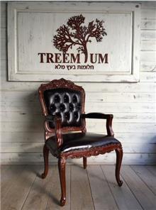 כורסא מפוארת מעץ מלא - Treemium - חלומות בעץ מלא