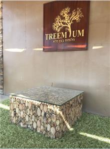 שולחן סלון עצי סחף - Treemium - חלומות בעץ מלא