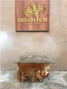 שולחן סלוני מעץ טיק - Treemium - חלומות בעץ מלא