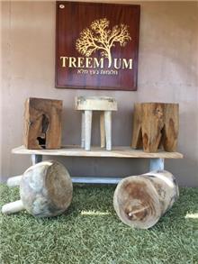 הדומים ובולי עץ במבצע - Treemium - חלומות בעץ מלא