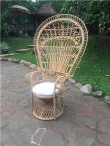 כיסא טווס רוז ראטן טיבעי - Treemium - חלומות בעץ מלא